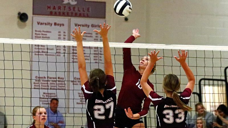 Hartselle volleyball wins seven matches