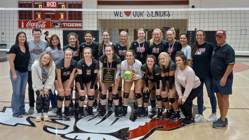 Lady Tigers win fourth-straight volleyball area title